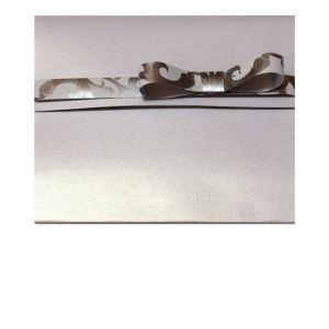 Bianco e argento Fronte Anteprima