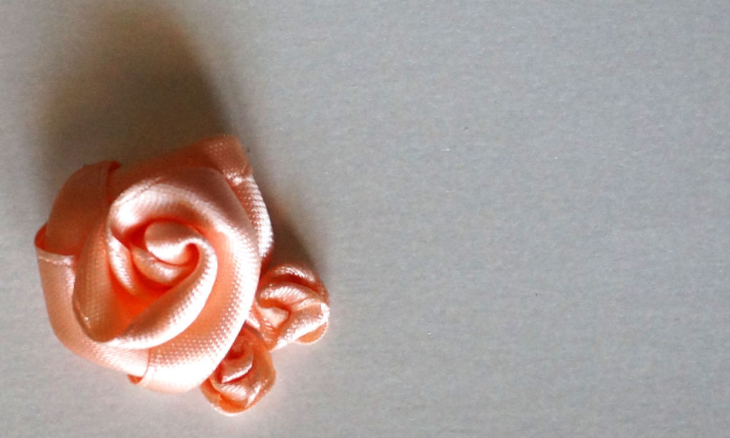 rosa pesca 2